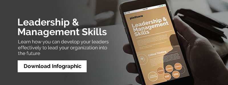 Leadership Management Skill Plethora Infographics