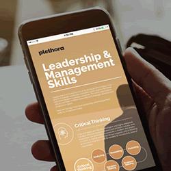 Plethora | Leadership & Management training | Infographic