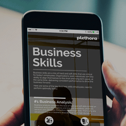 Plethora Infographics | Business Skills