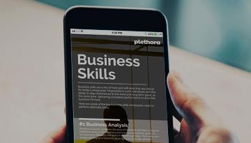 Plethora Infographics | Business Skills