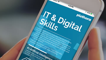 Plethora | Insightful Infographics | IT & Digital skills